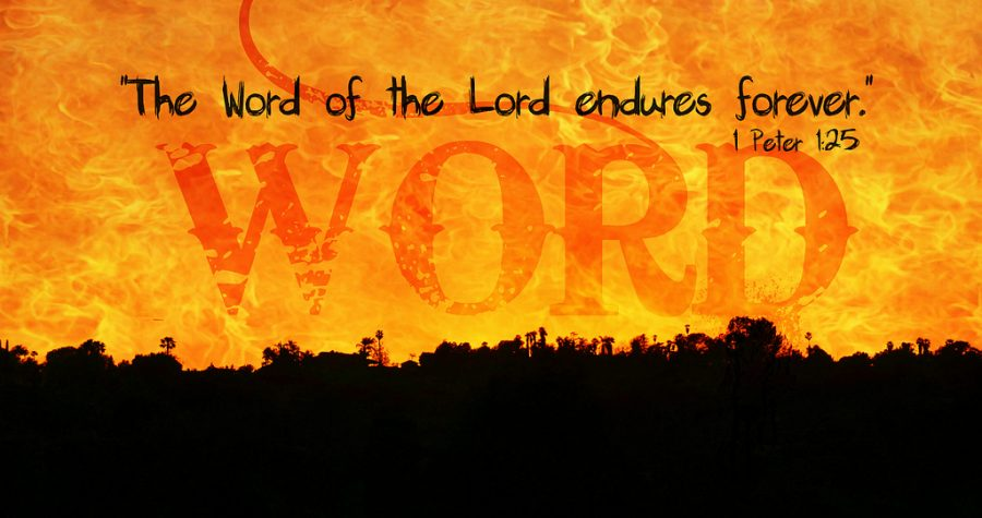 Het &#8216&#x3B;Woord van de Heer&#8217&#x3B; en de Geest van profetie